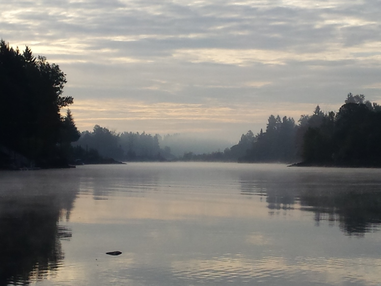 fog-strewn sunrise