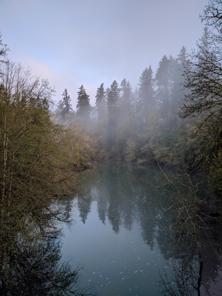 creek fog at sunrise april