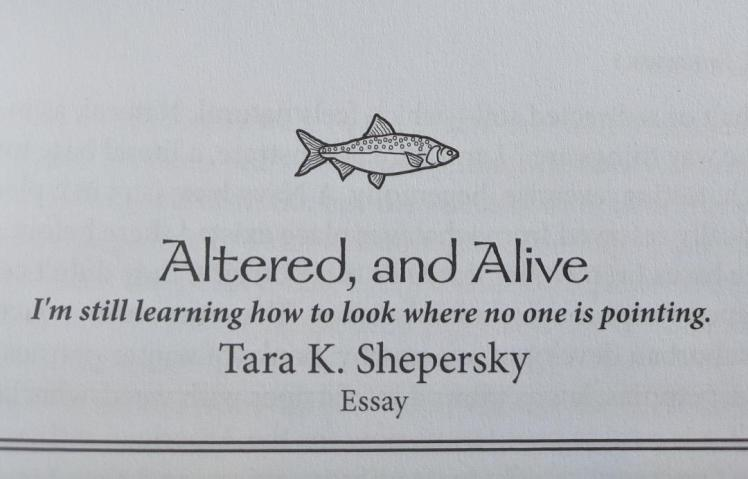 "Title page for Altered, and Alive: ""I'm still learning how to look where no one is pointing."""